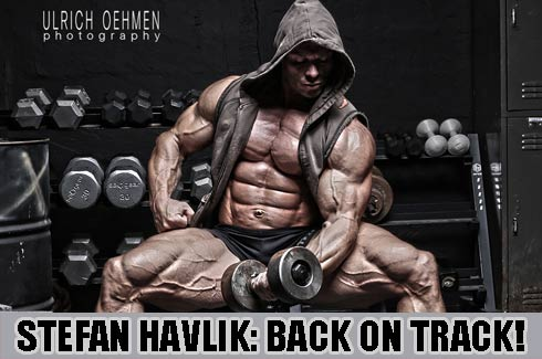 stefan havlik back on track