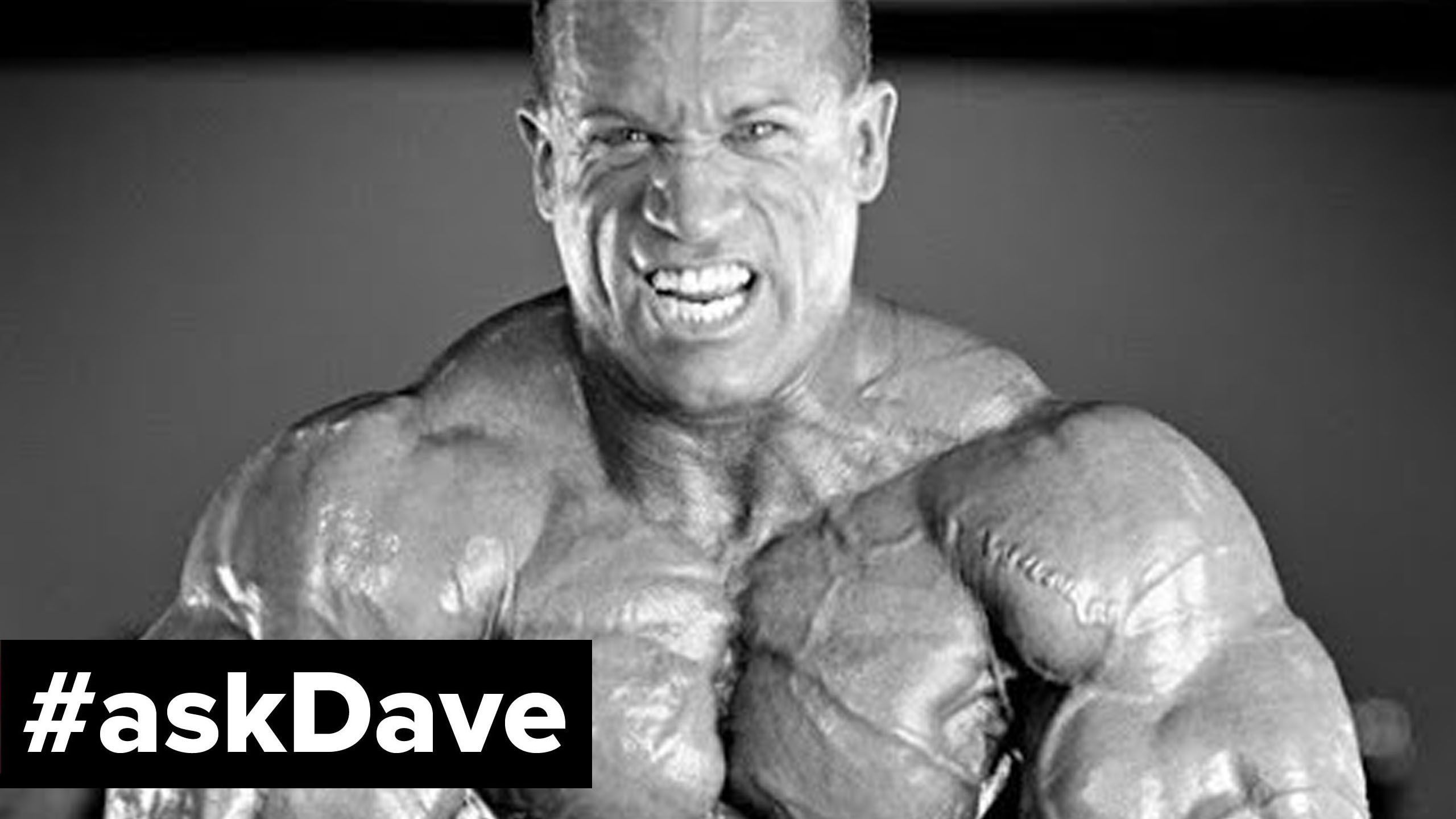 dave palumbo todays mr olympia