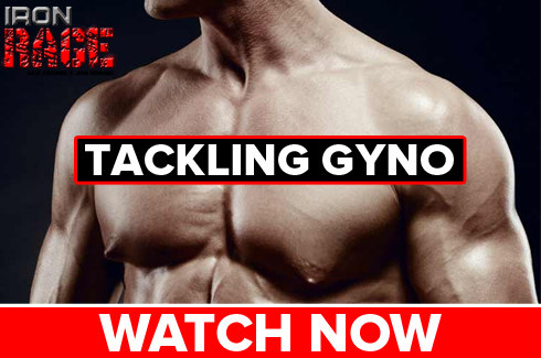 gyno in bodybuilders