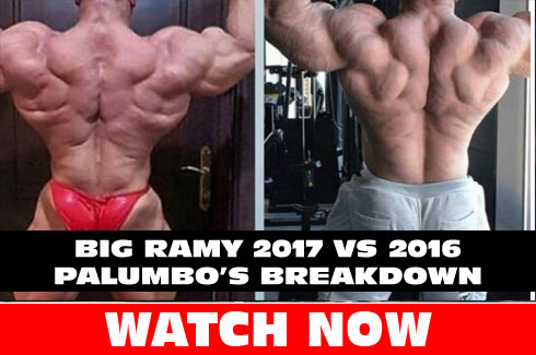 big ramy 2016 vs 2017