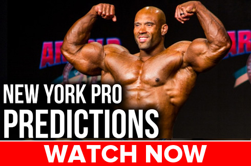 nypro17 predictions web