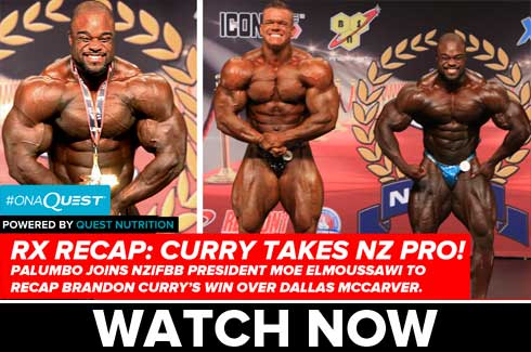 nz pro recap with moe elmoussawi