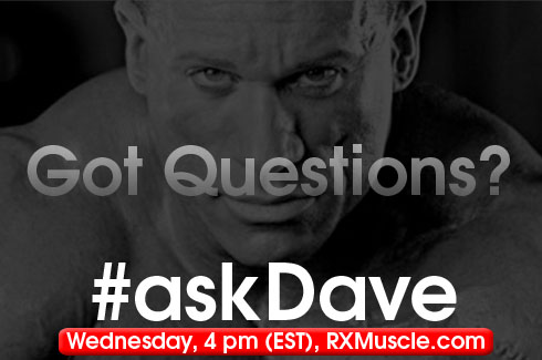 askdave wednesday