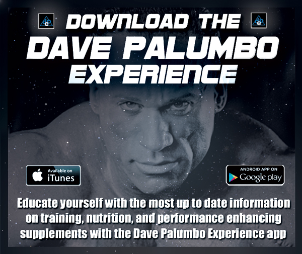 downloadtheDpExperience 490