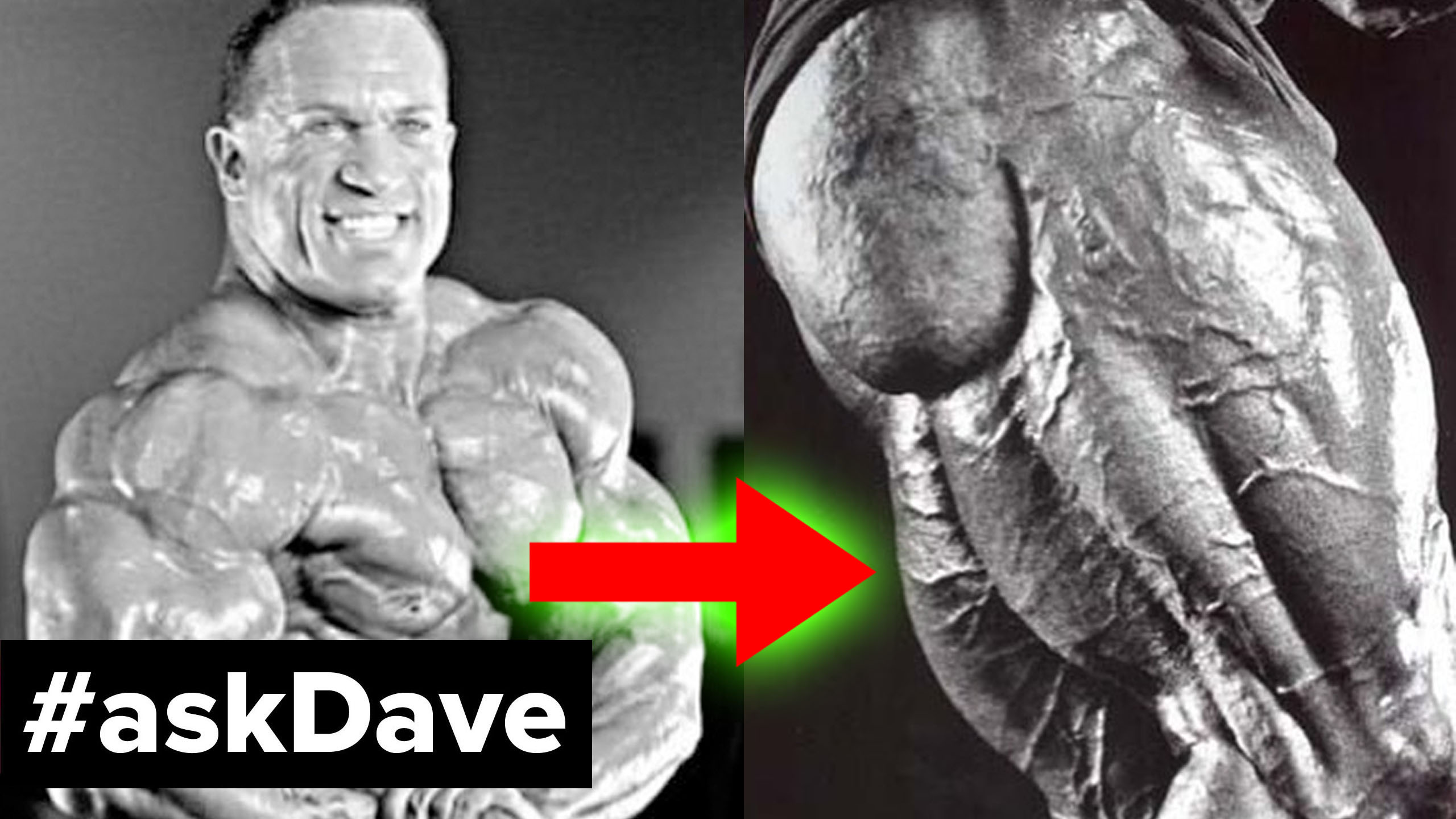 dave palumbo hamstrings askdave