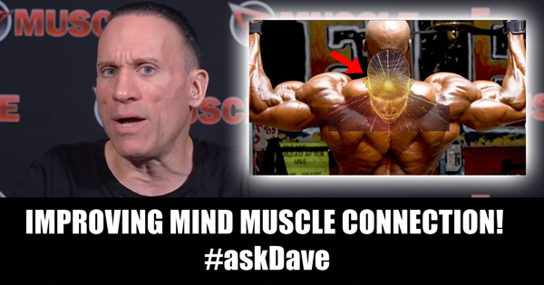 ask dave mind muscle